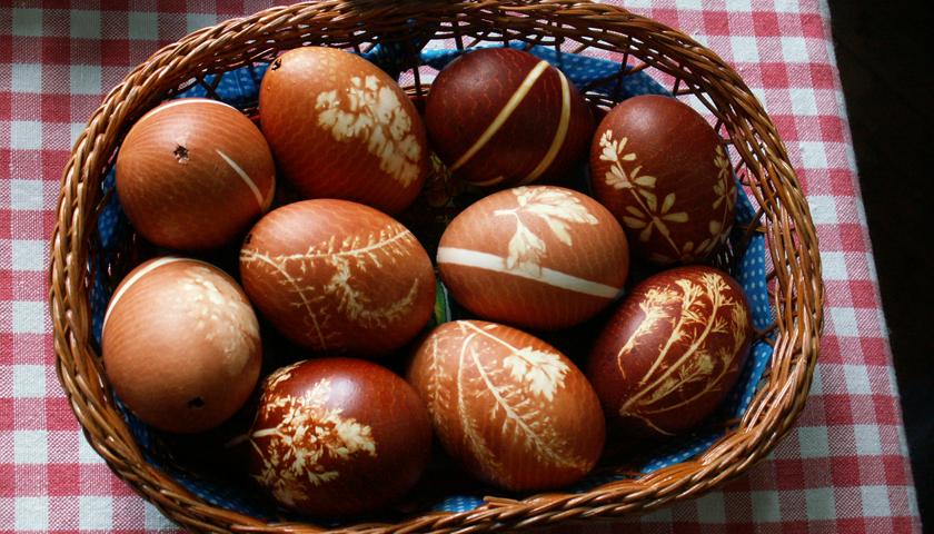 egg-2162277_19202